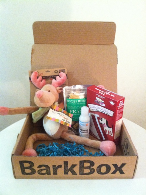 December BarkBox