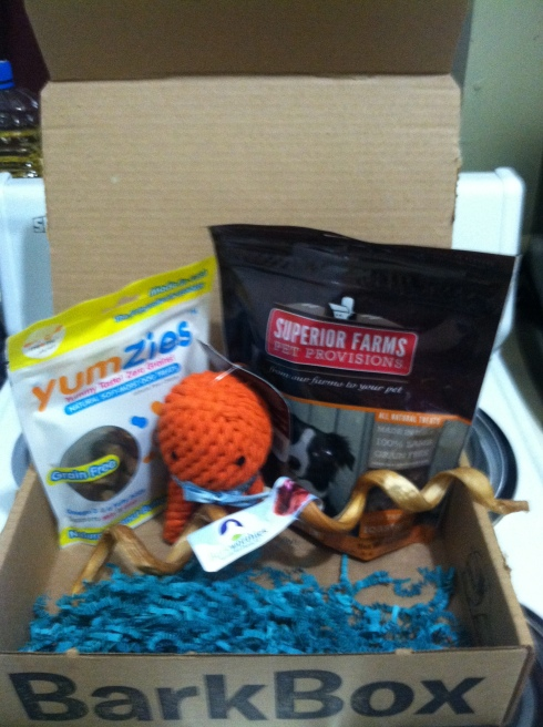 January's BarkBox