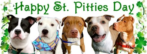 Happy St. Pitties Day