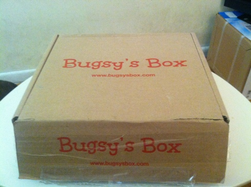 Bugsy's Box